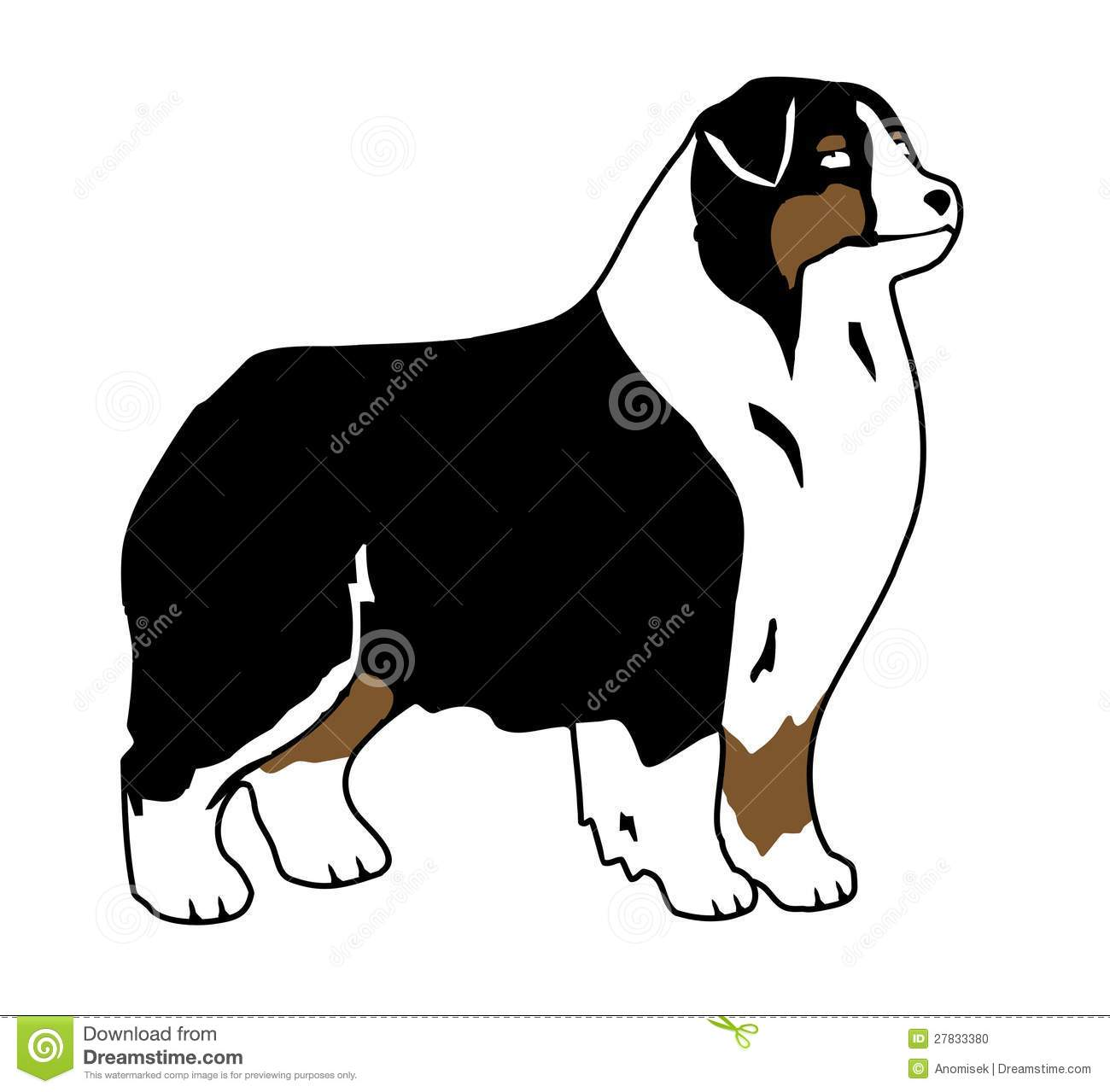 Cartoon Australian Shepherd Australian shepherd cartoon.