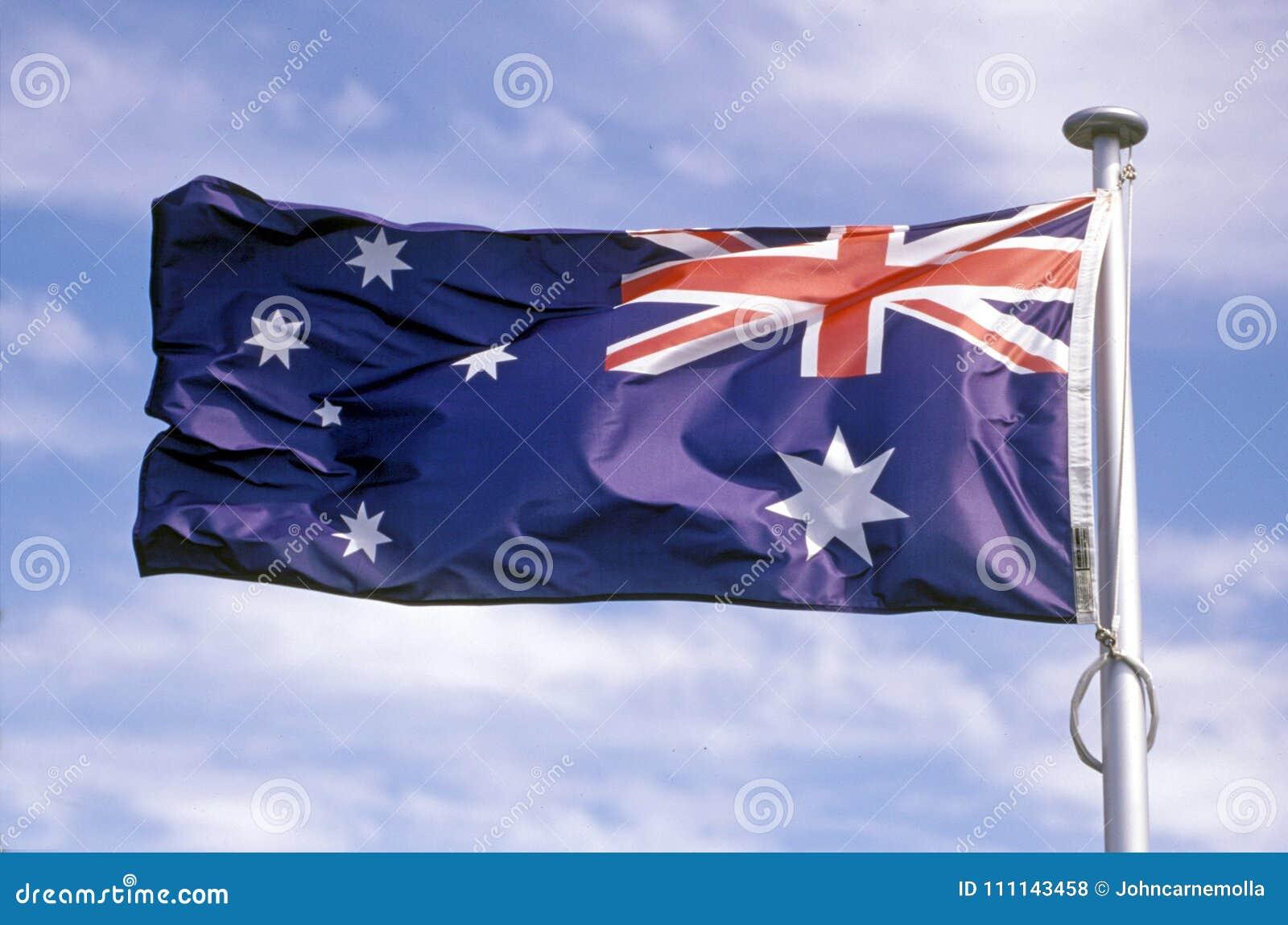 Australijczyka Chorągwiany latanie