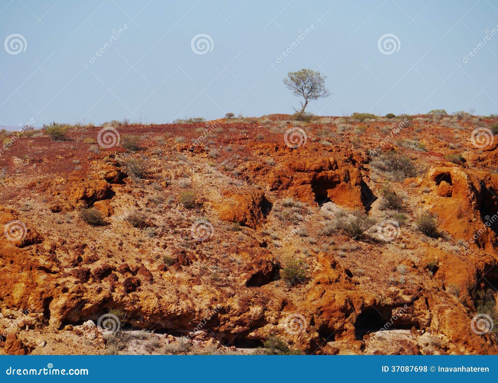 Download Australijscy Breakaways zdjęcie stock. Obraz złożonej z australia - 37087698