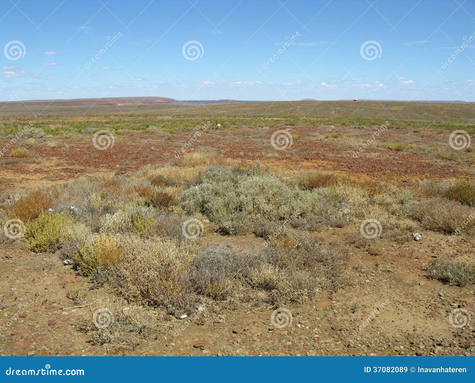 Download Australijski odludzie obraz stock. Obraz złożonej z kolorowy - 37082089