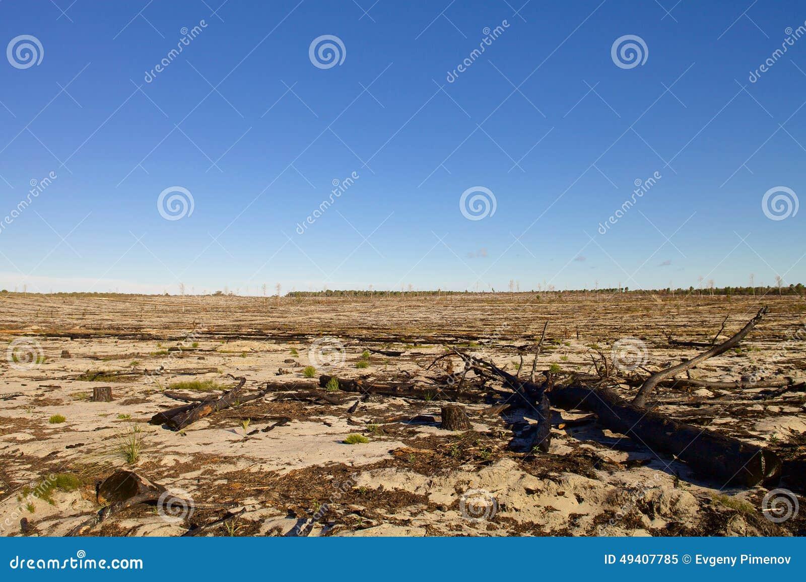 Download Australische Landschaft Am Sonnigen Tag Stockbild - Bild von lehm, landwirtschaftlich: 49407785