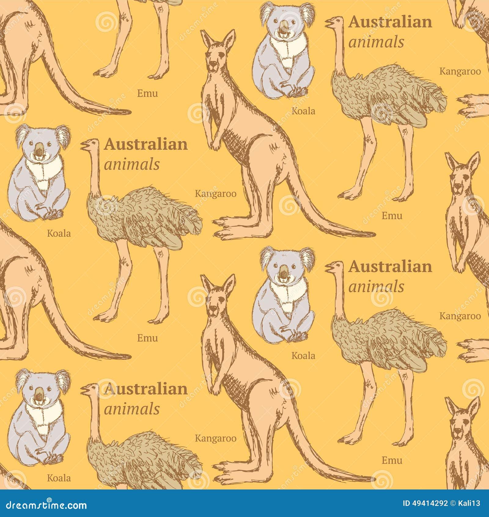 Download Australische Tiere Der Skizze In Der Weinleseart Vektor Abbildung - Illustration von grunge, schön: 49414292