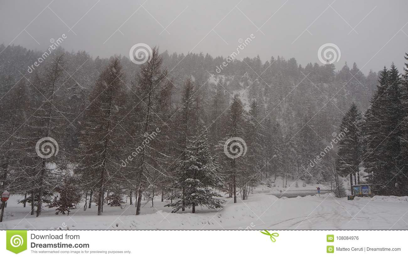 Austria, Tyrolean Alps. Road to Fern pass. Landscape during a snow fall