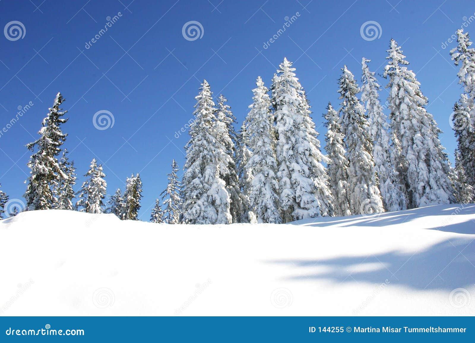 Austria zimy.