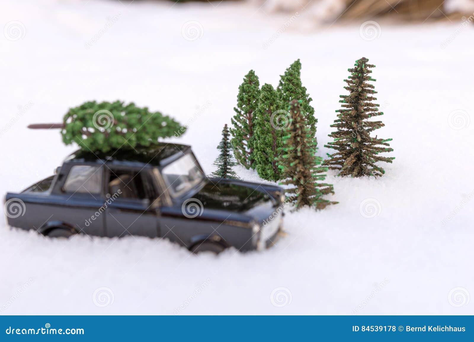 Auto Weihnachtsbaum.Auto Das Einen Weihnachtsbaum Im Immergrünen Miniaturwald