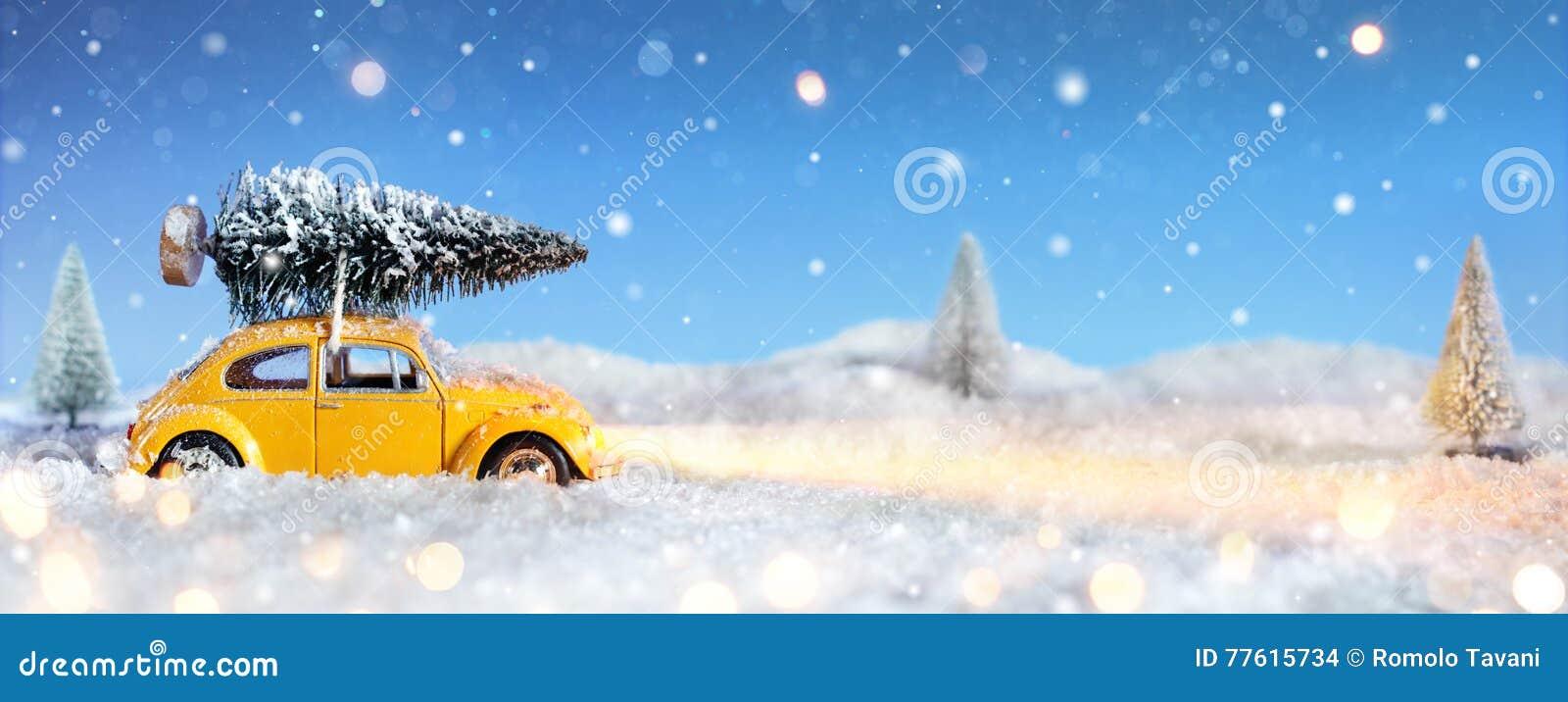Auto, das einen Weihnachtsbaum transportiert