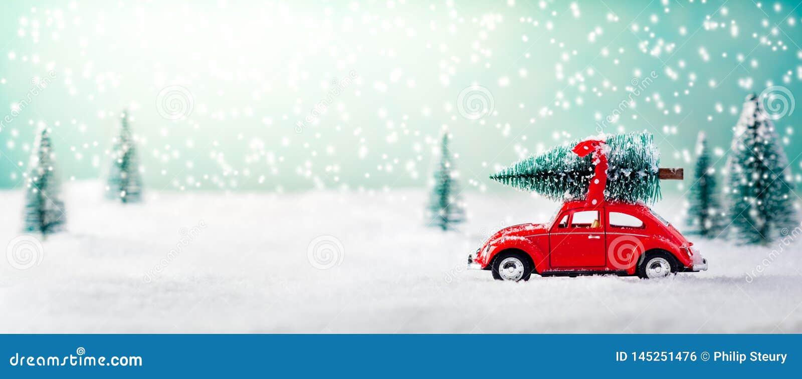 Auto Dragende Kerstboom