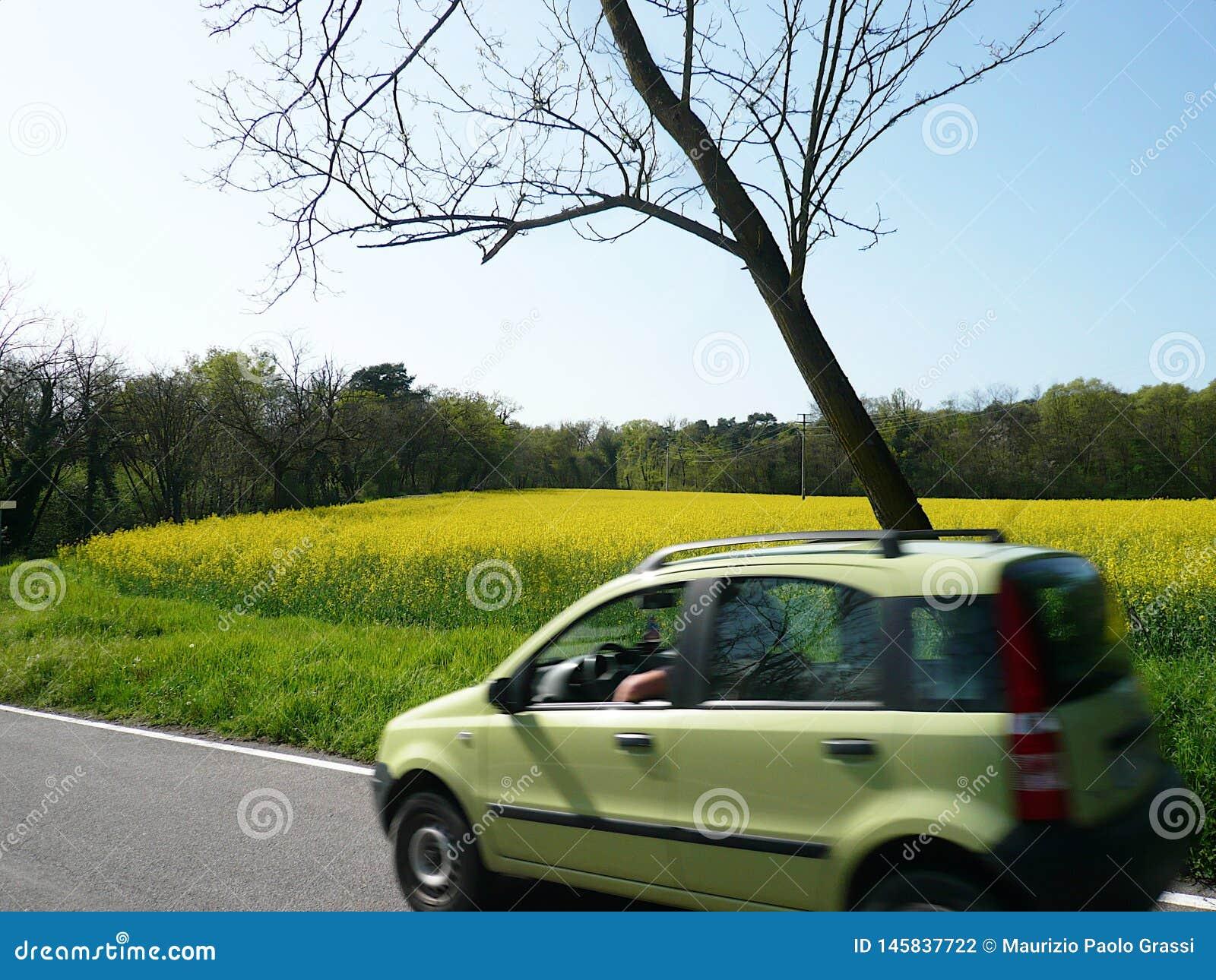 Auto met een raapzaadgebied dat wordt gebruikt om biodiesel te produceren