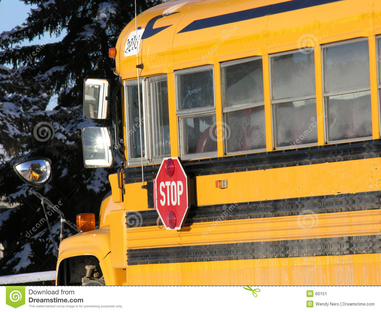 Download Autobus scolaire image stock. Image du transport, jaune - 60151