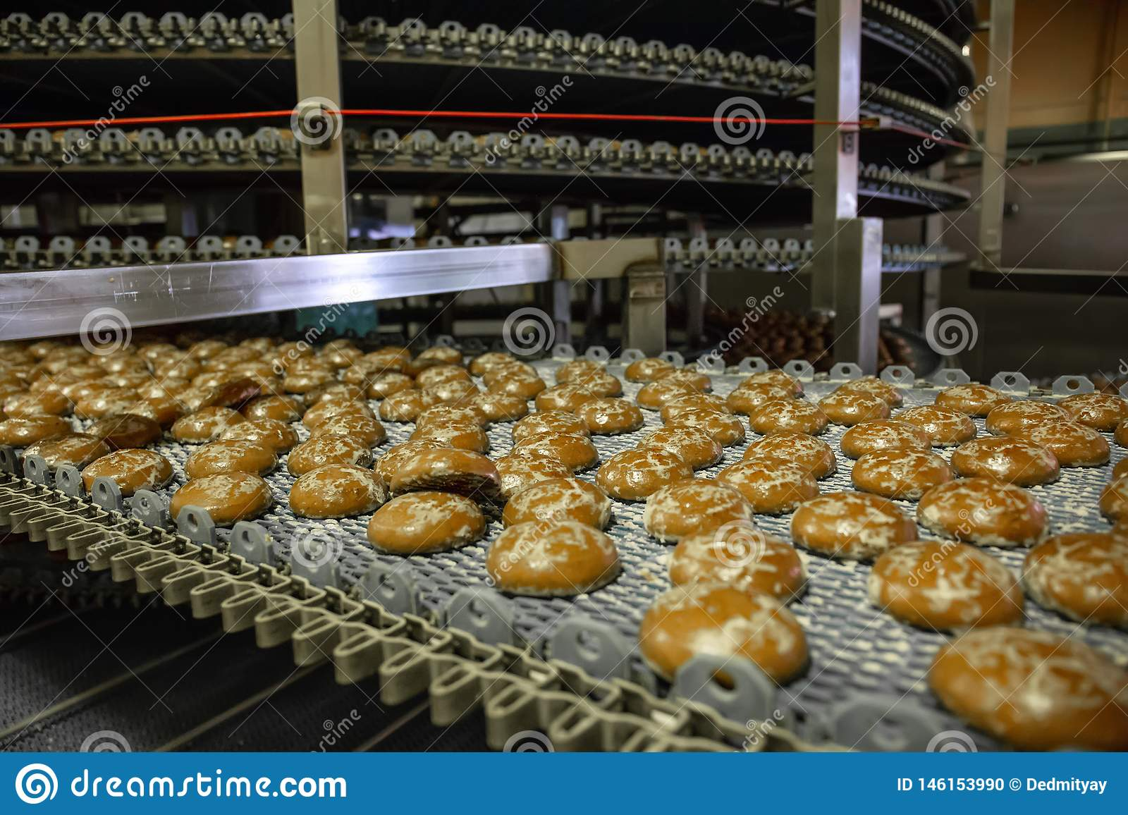 Automated conveyor line or belt machine in bakery or confectionery food factory, cookies and cakes production manufactory