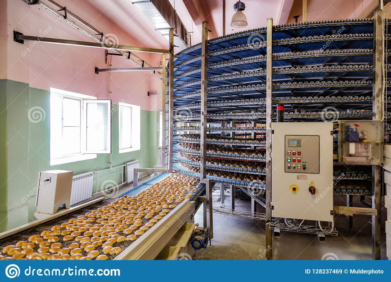 Automated round conveyor machine in bakery food factory, cookies and cakes production line