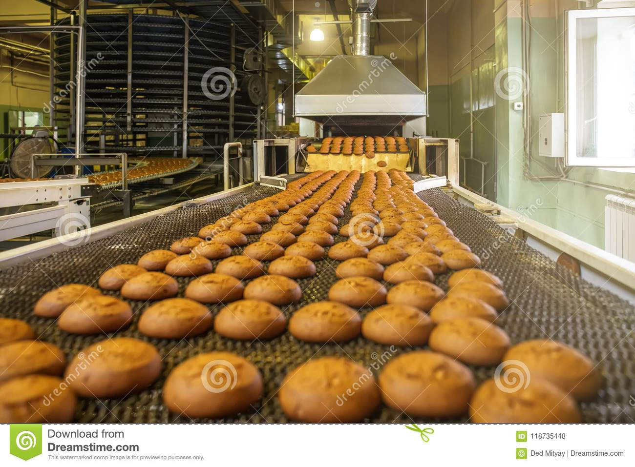 Automatic bakery production line with sweet cookies on conveyor belt equipment machinery in confectionary factory workshop