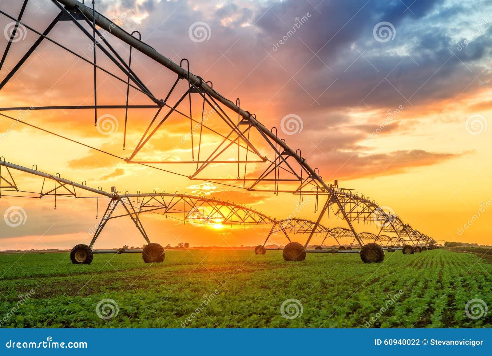 Automatiserat lantbrukbevattningsystem i solnedgång
