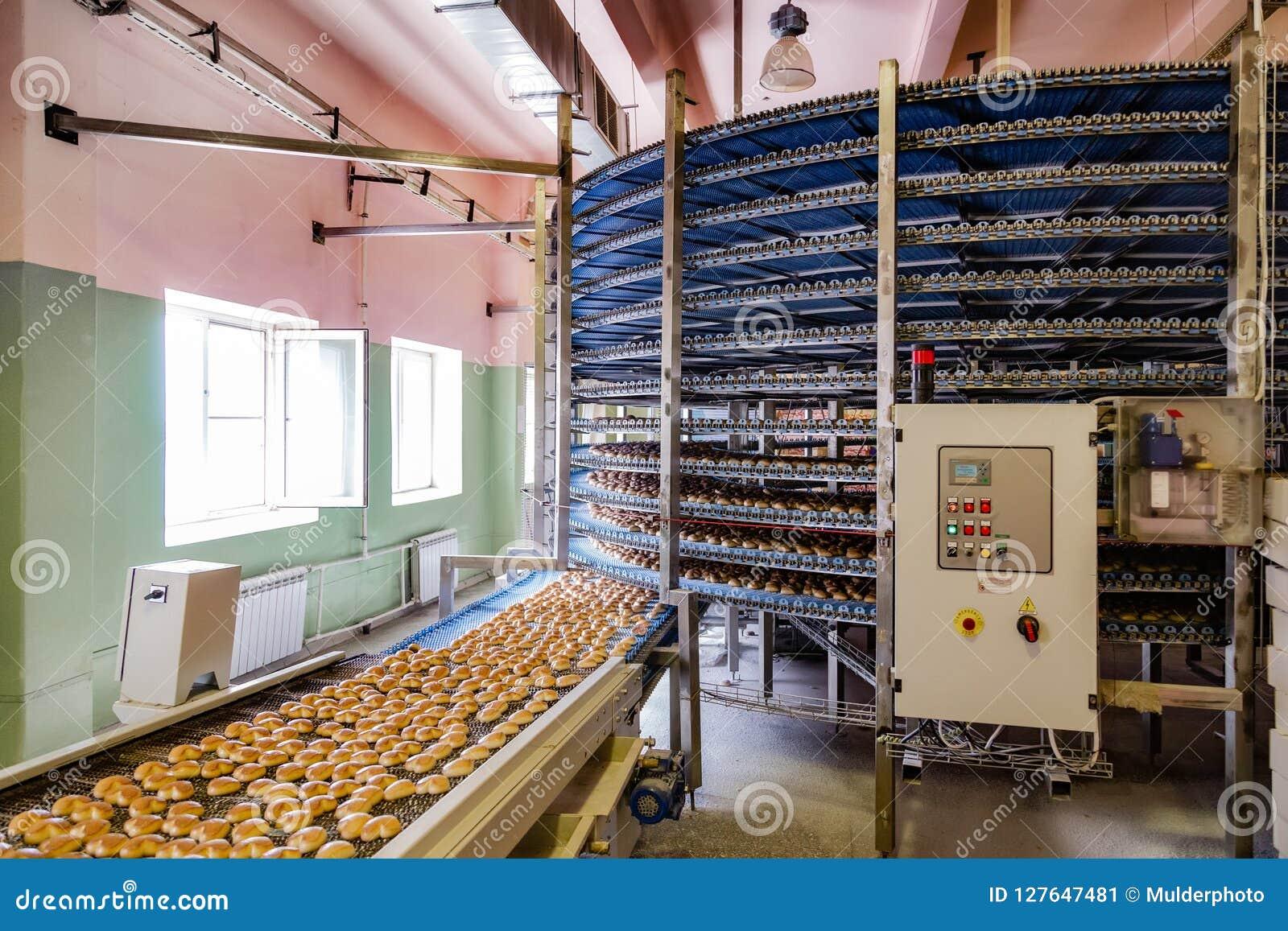 Automatyzujący wokoło konwejer maszyny w piekarni karmowej fabryki, ciastek i tortów linii produkcyjnej,