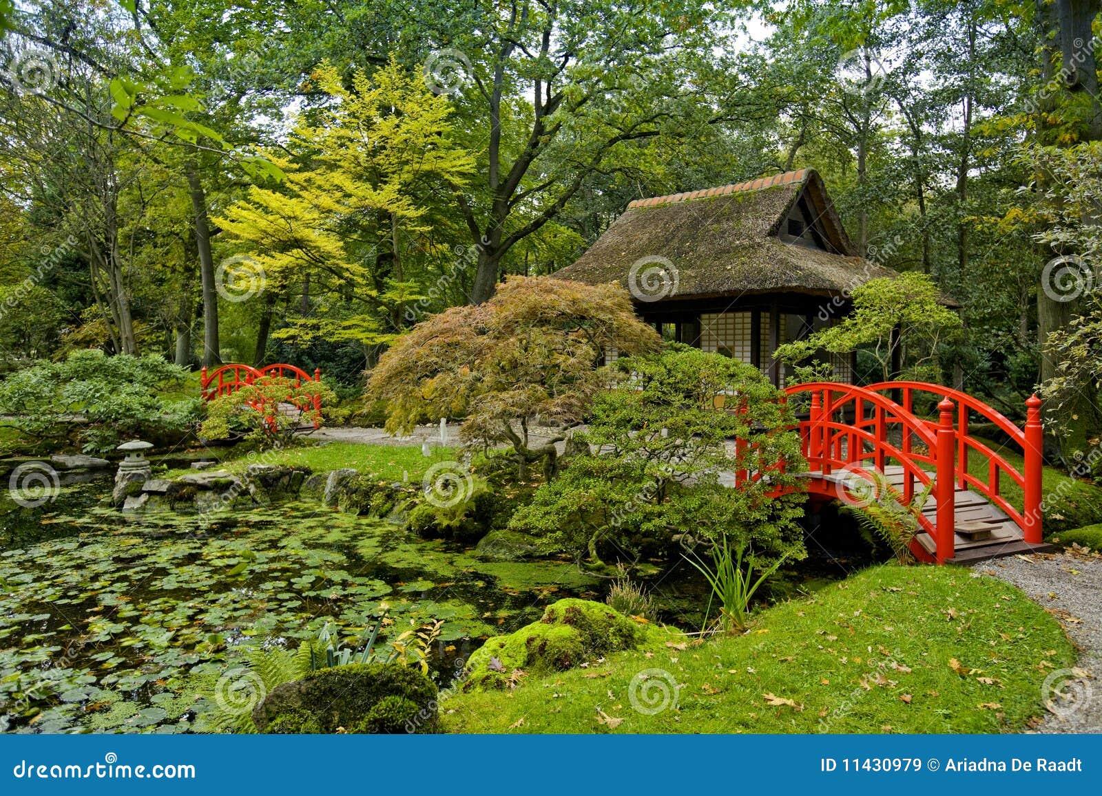 Automne dans le jardin japonais