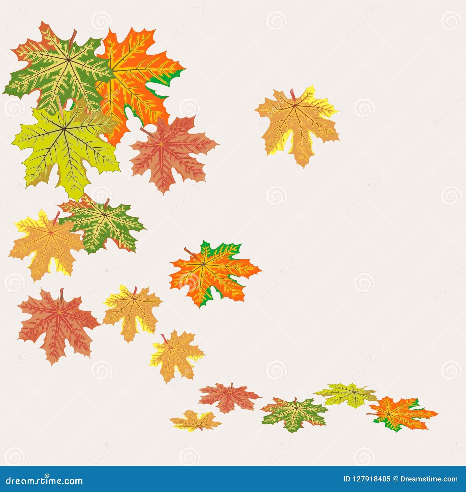 Automne De Feuille De Clipart De Graphiques De Vecteur Illustration De Vecteur Illustration Du Automne Feuille 127918405