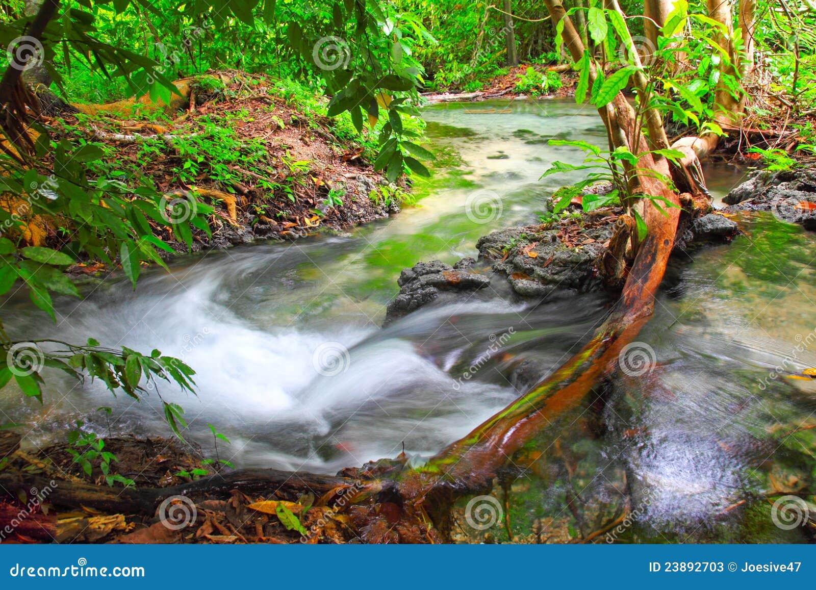 Automne de l eau