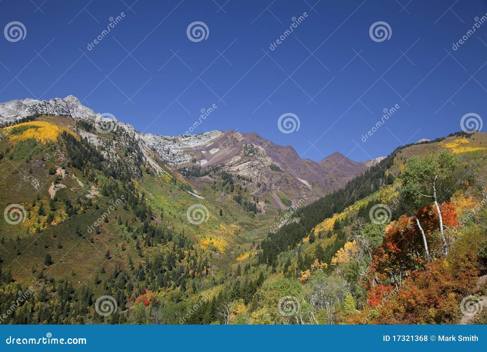 Automne de montagne rocheuse