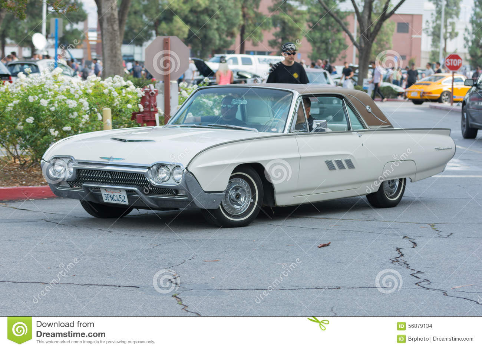 Automobile di Ford Thunderbird su esposizione