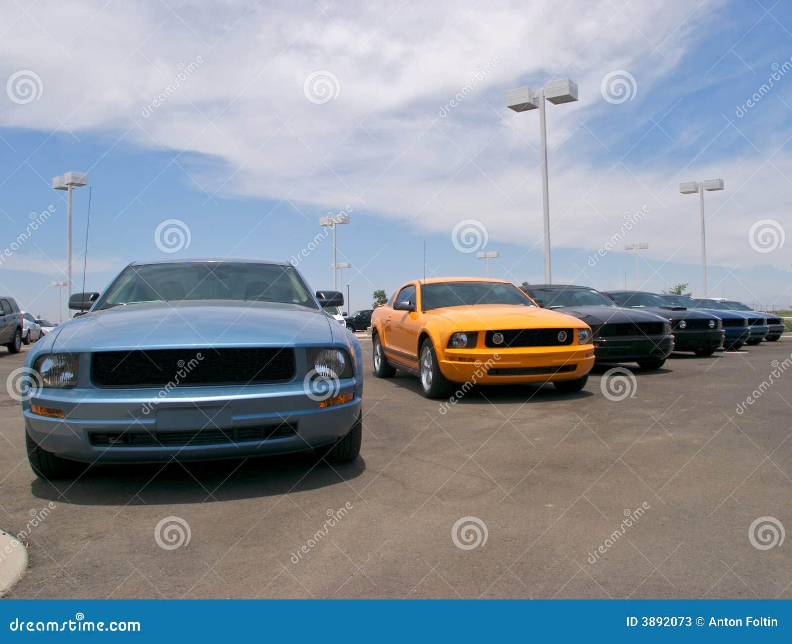 Automobili sportive