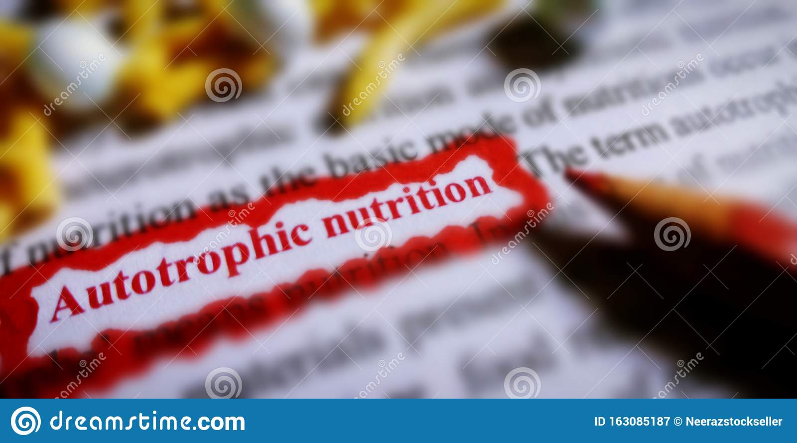 Autotrophic Nutrition Presented With Red Border Covered Text Form Stock Image Image Of Form Clotting 163085187