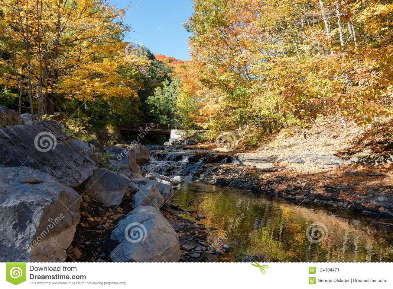 An Autumn Afternoon by a Mountain Stream