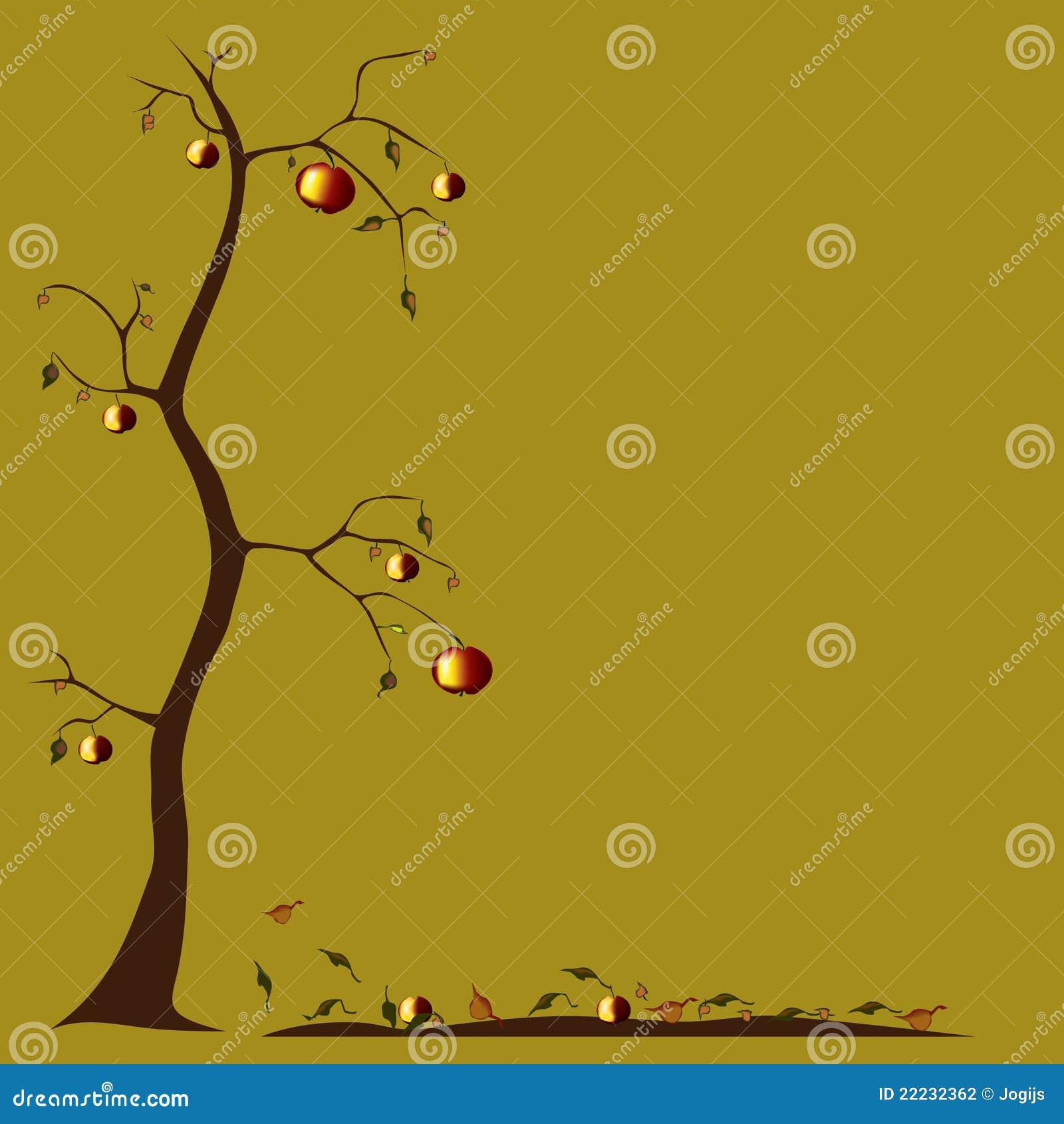 Botanical garden trees free desktop background free ...