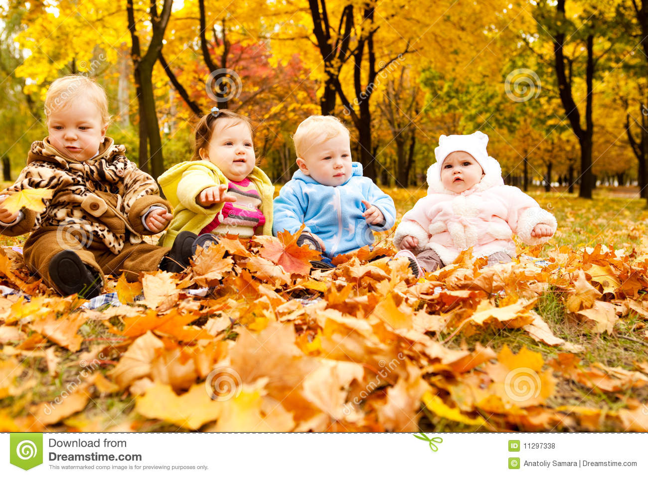 Autumn Babies Royalty Free Stock Photos Image 11297338