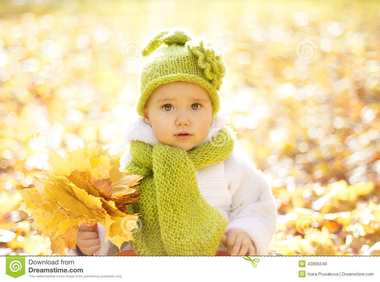 Autumn Baby Portrait In Fall Yellow Leaves, Little