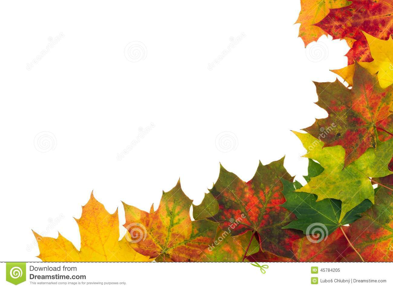 Autumn backdrop - frame composed of colorful autumn leaves