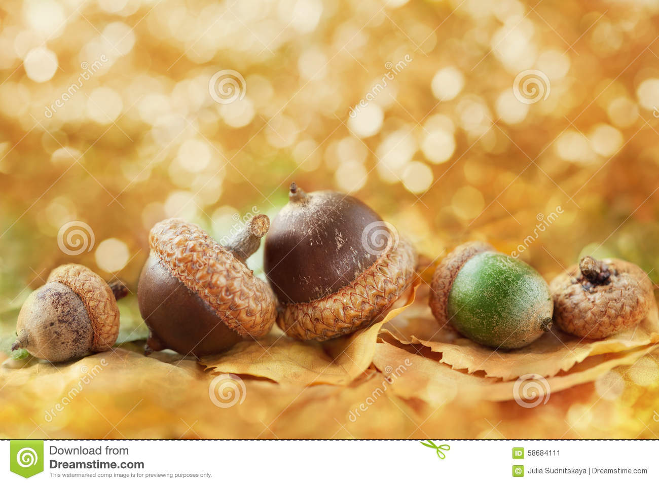 Autumn background with acorns, leaves and fantastic bokeh with copy space for your text