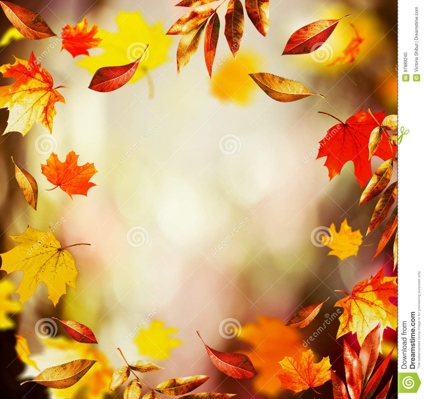 Autumn background with Beautiful falling leaves and bokeh, fall nature in garden