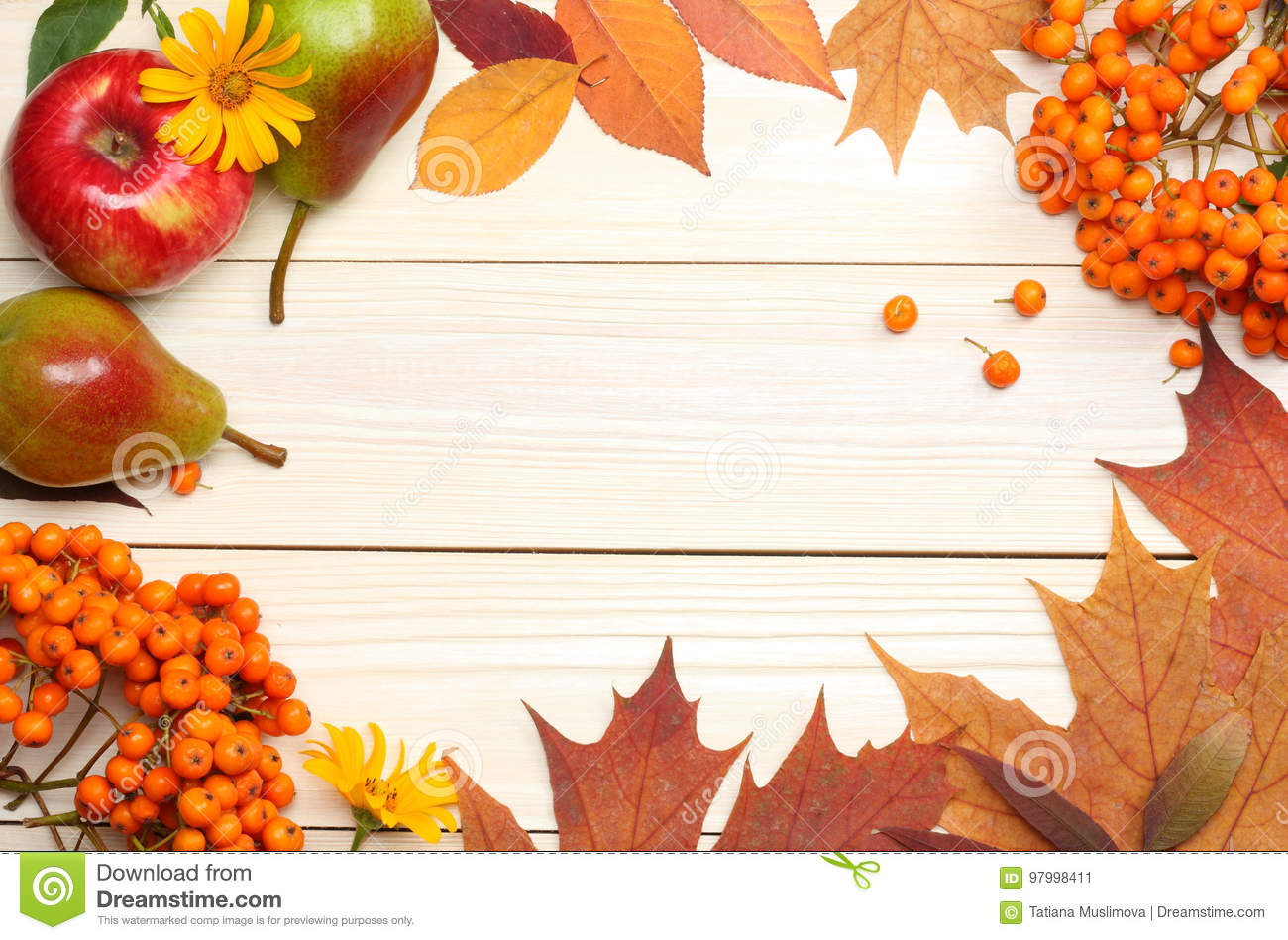 Autumn background with colored leaves on wooden board. top view