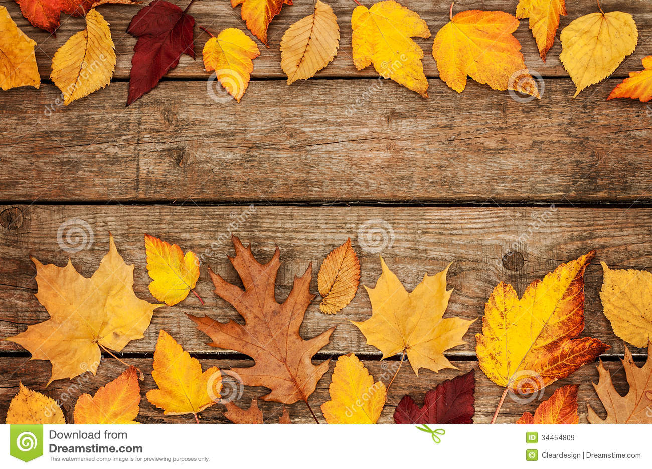 autumn background different shaped leaves on wood stock image