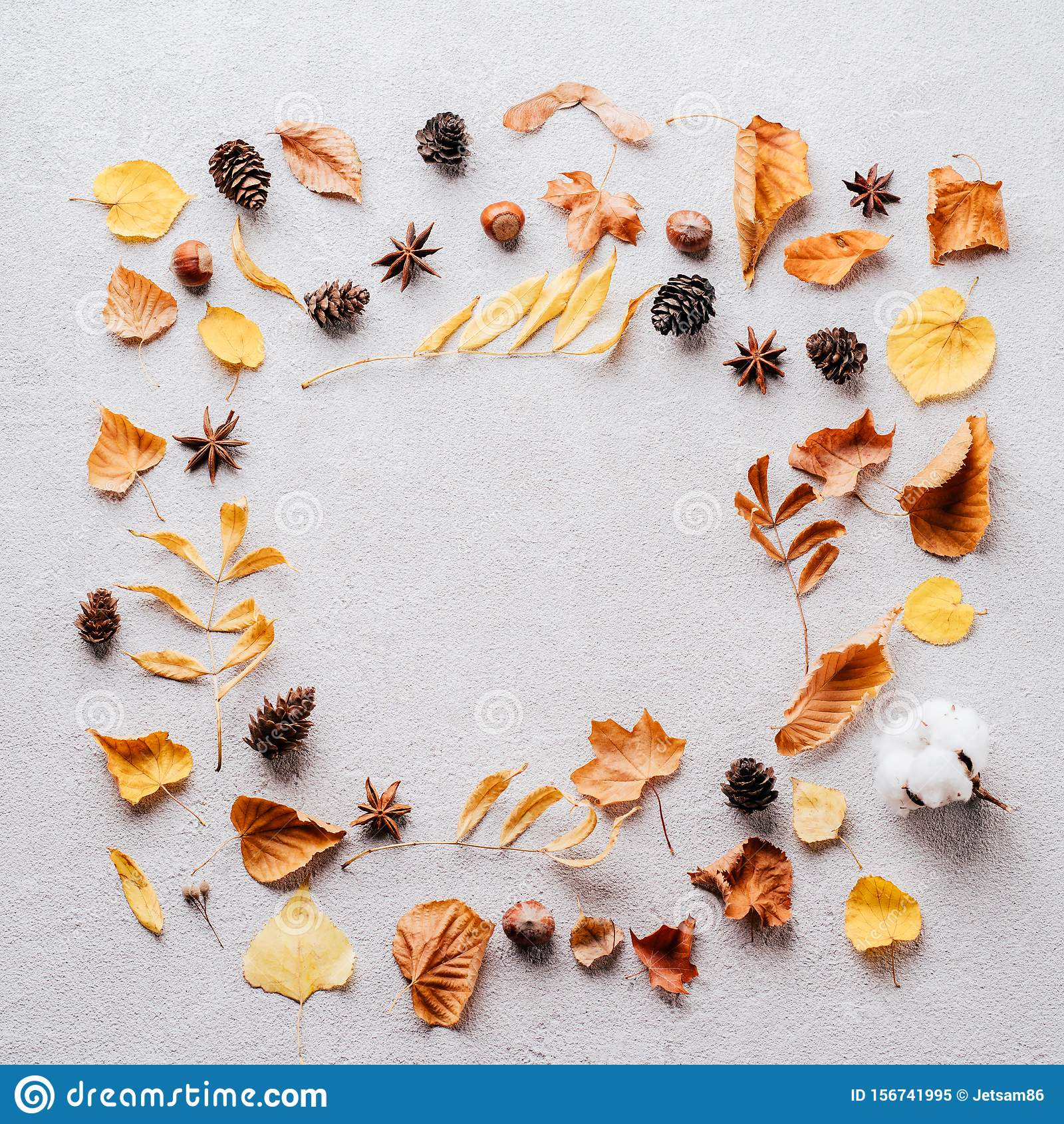 Autumn background, fall concept, thanksgiving day