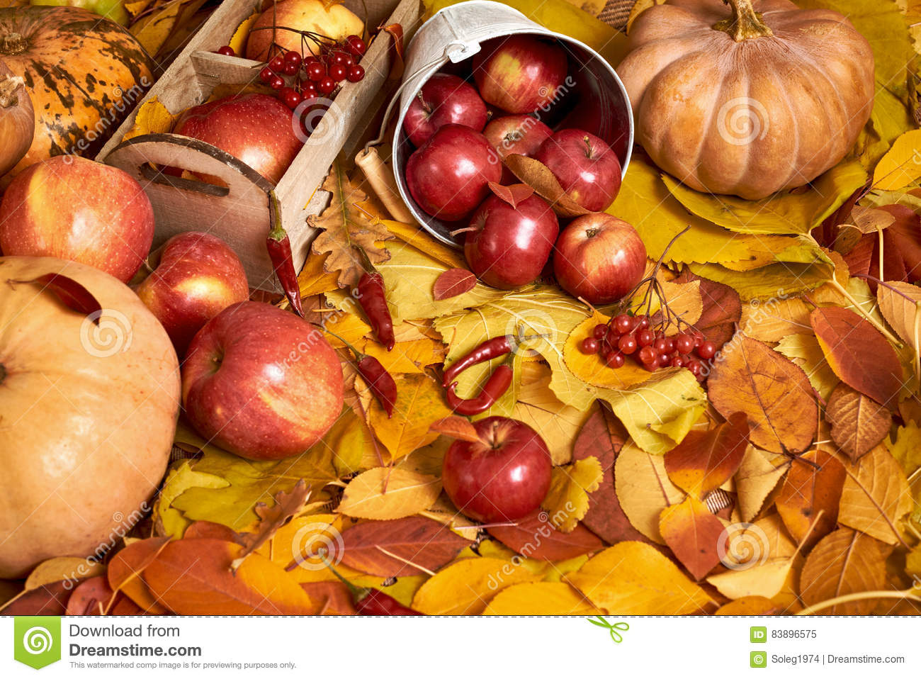 Autumn background fruits and vegetables on yellow fallen for Apples decoration