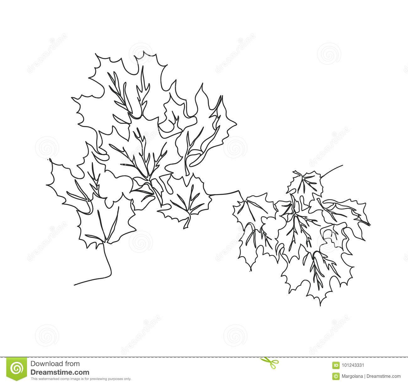 Line Art Leaves : Autumn background with maple leaves stock vector