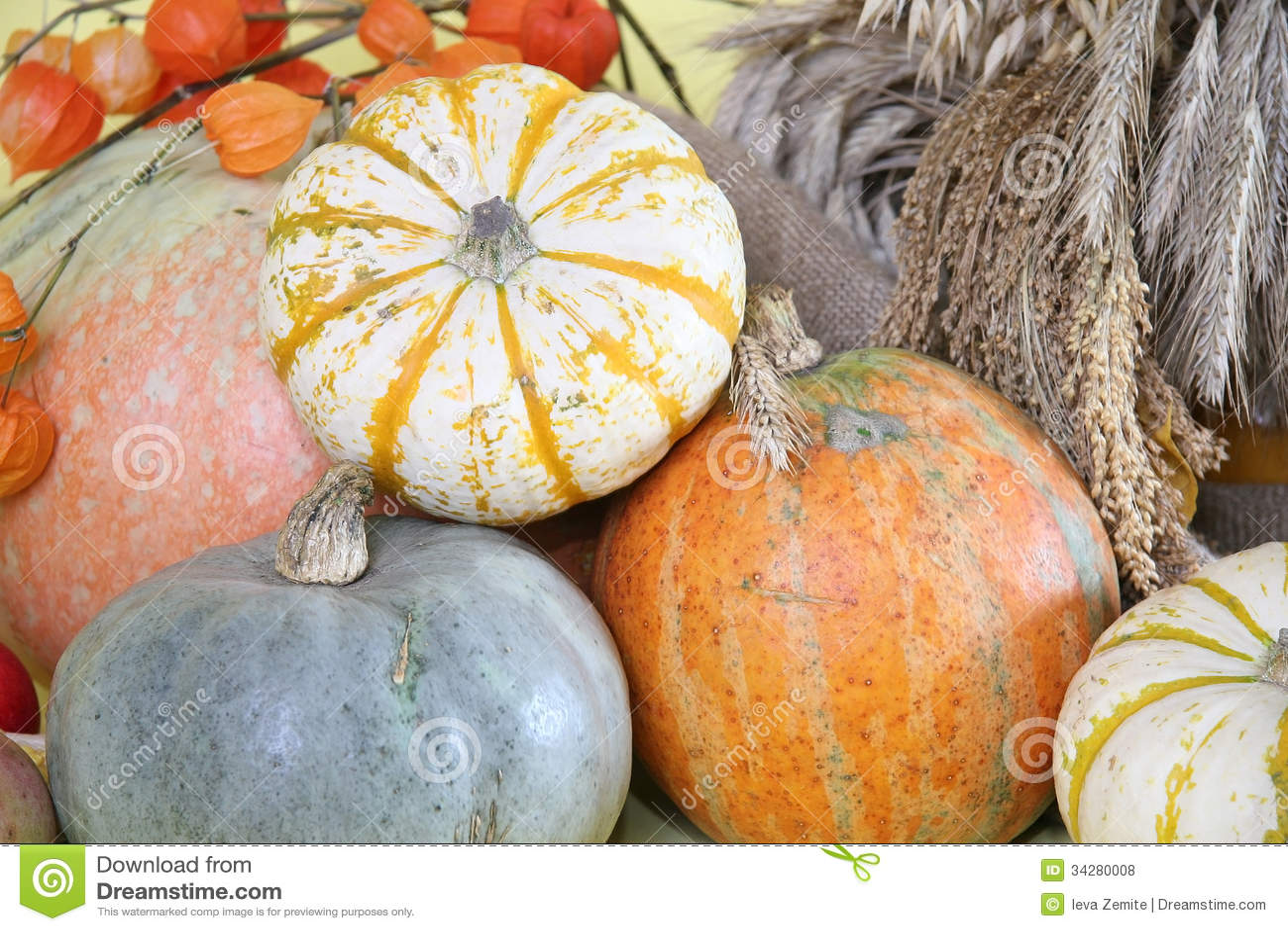 thanksgiving, autumn border