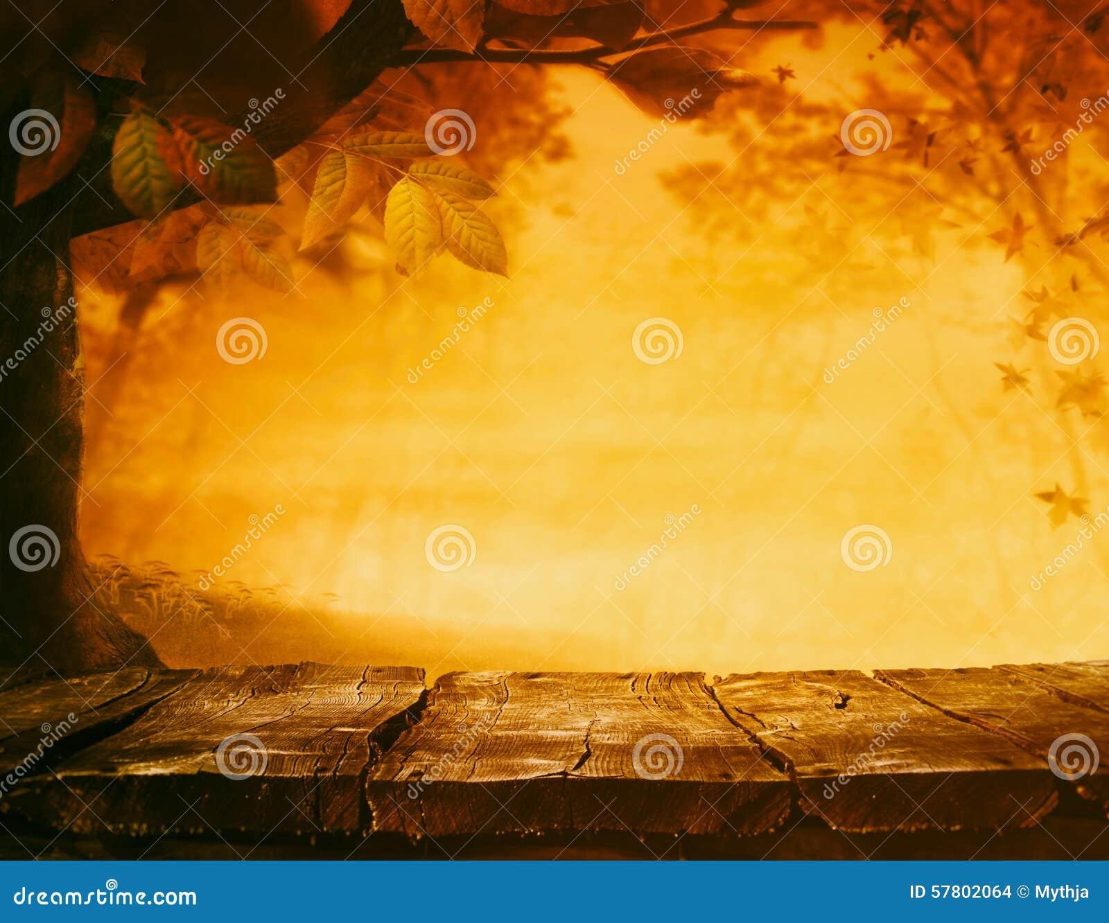 Autumn Background Stock Photo Image 57802064