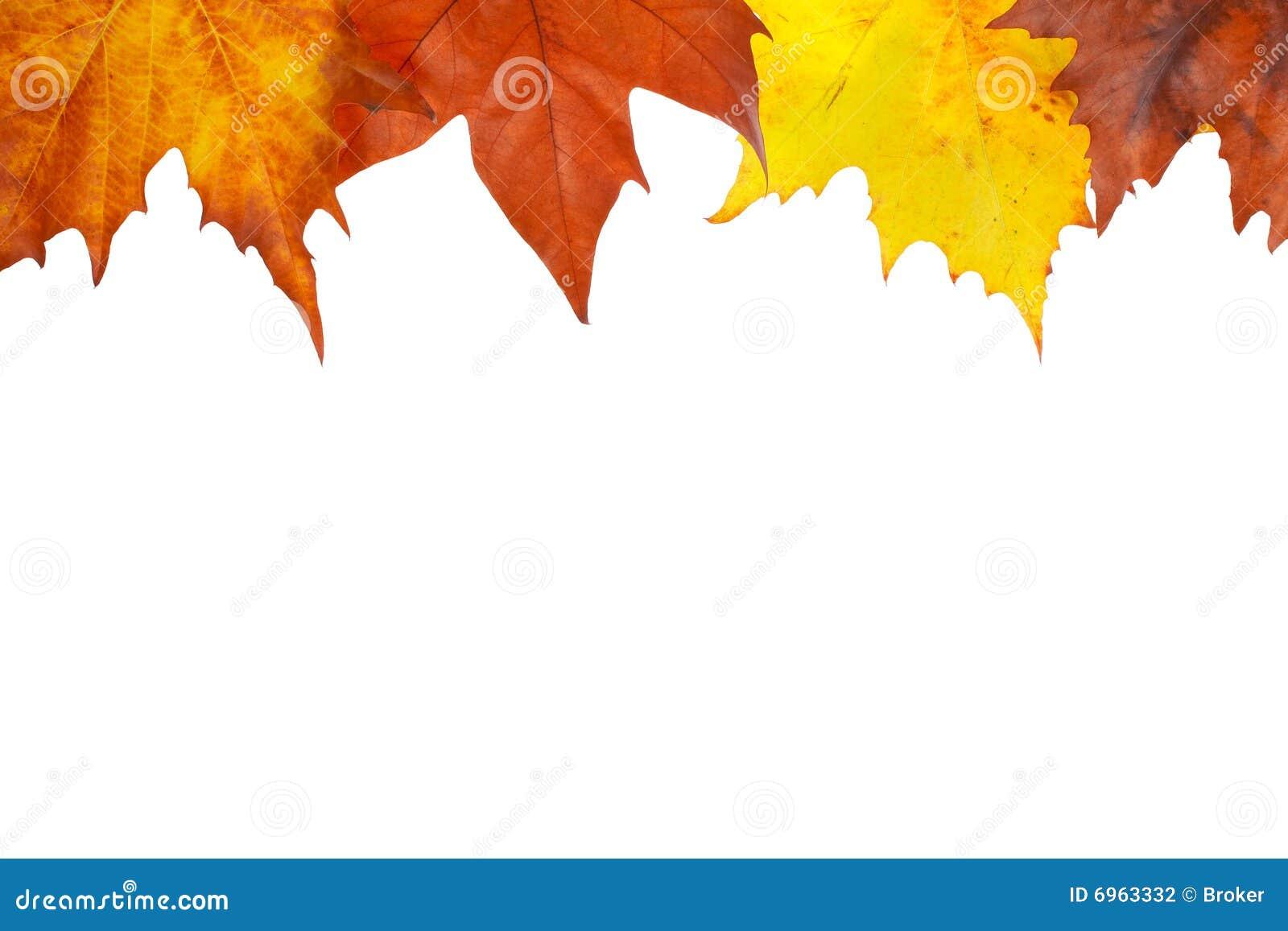 Autumn border stock photo. Image of autumnal, holiday ...