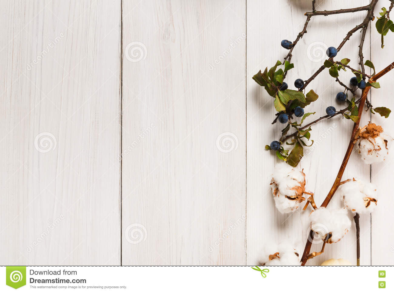 Autumn Border Of Dried Flowers On White Wood Background Stock Image
