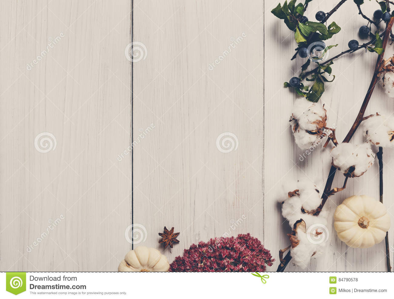Autumn Border Of Dried Flowers On White Wood Background Stock Photo