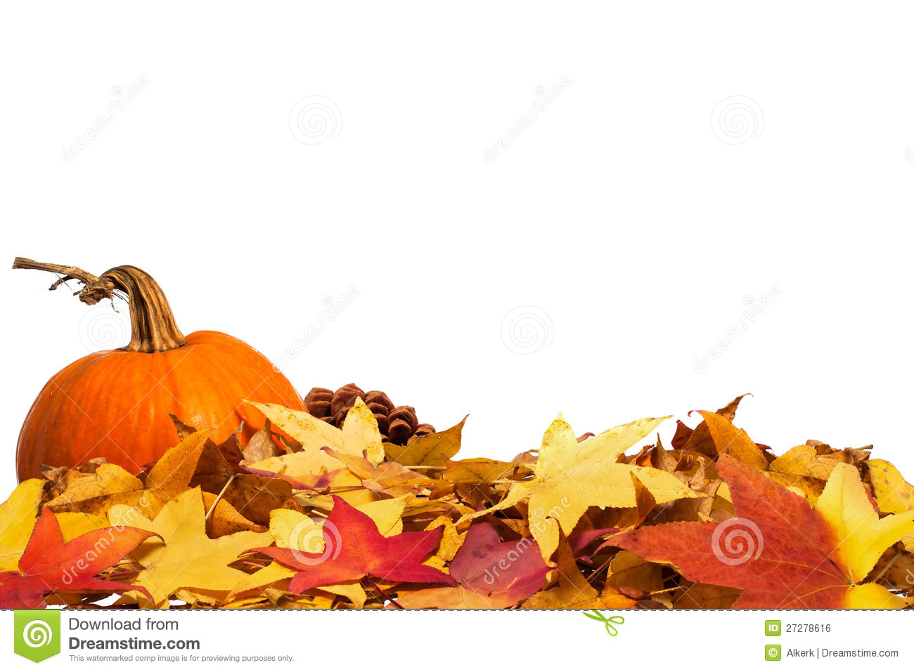 Autumn border with pumpkin stock photo. Image of pumpkin ...