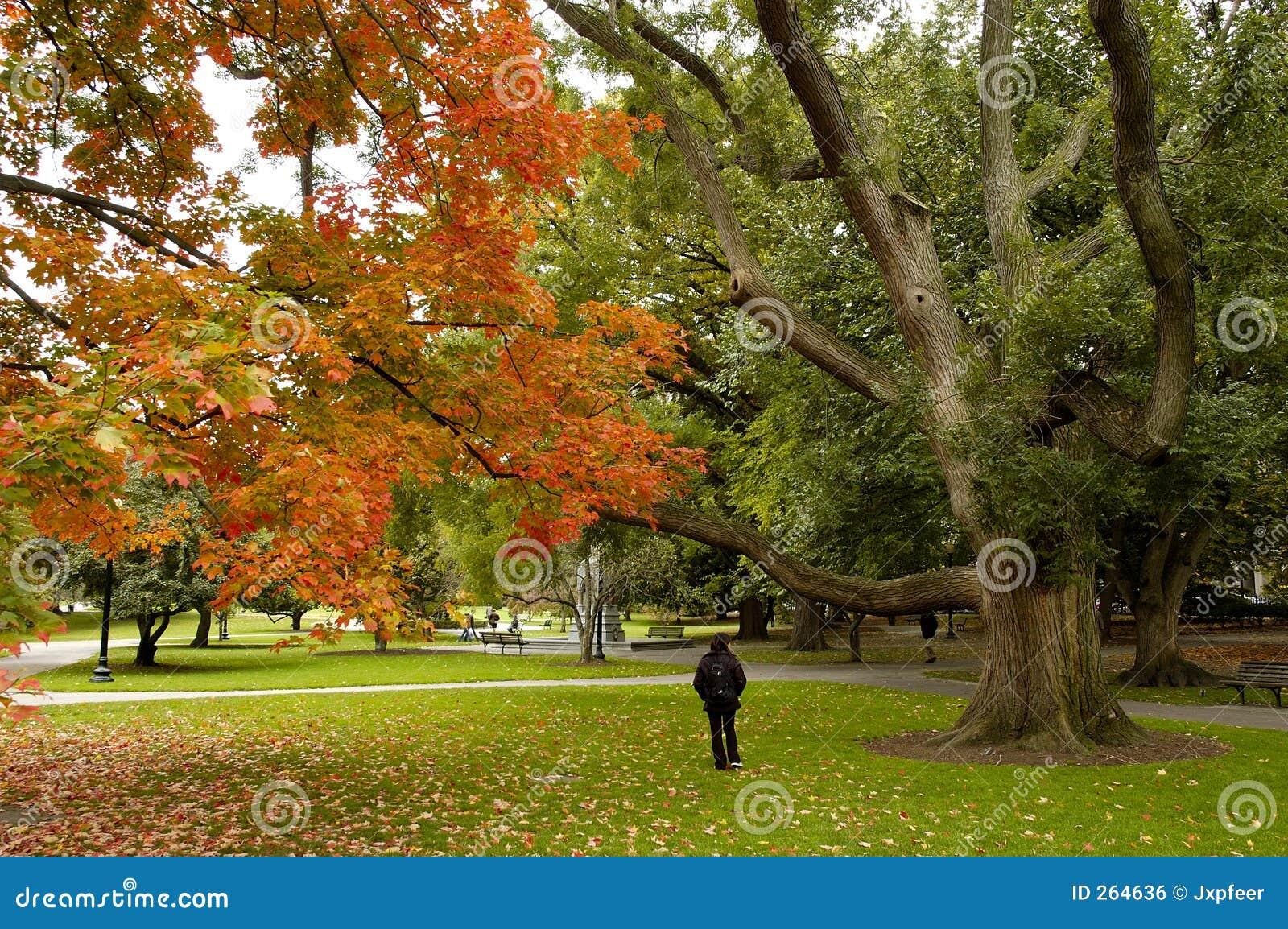 Autumn at Boston Common