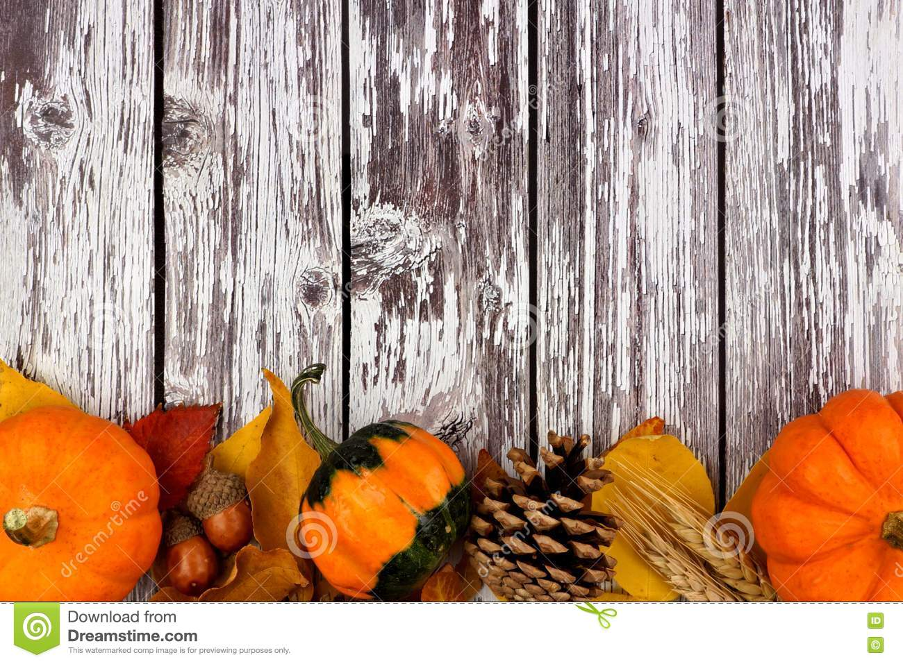 Download Autumn Bottom Border Against A Rustic Old White Wood Background Stock Photo