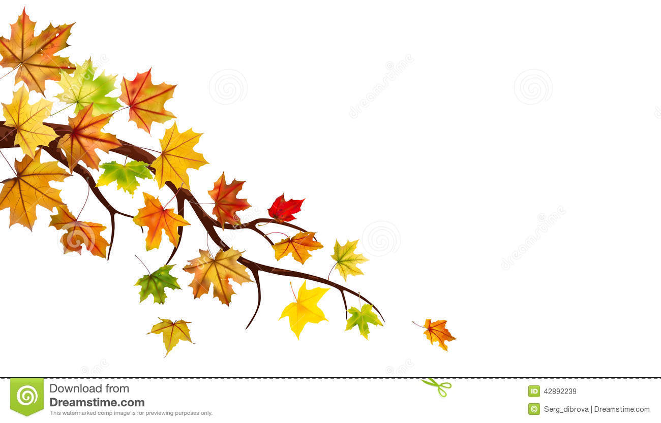 tree branch with leaves vector. tree branch with falling yellow autumn leaves vector image #108190 .