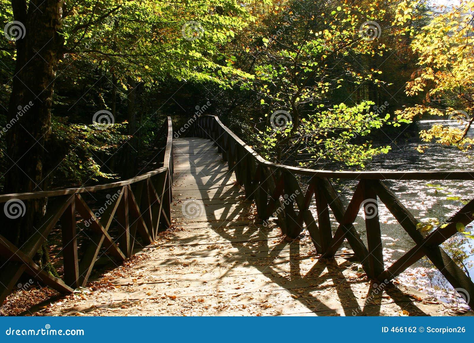 Download Autumn bridge stock photo. Image of lake, bridge, cross - 466162