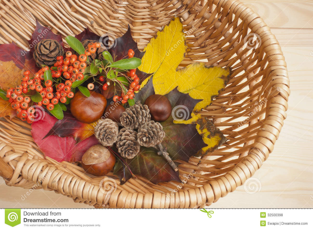 Autumn collection, leaves, conkers.