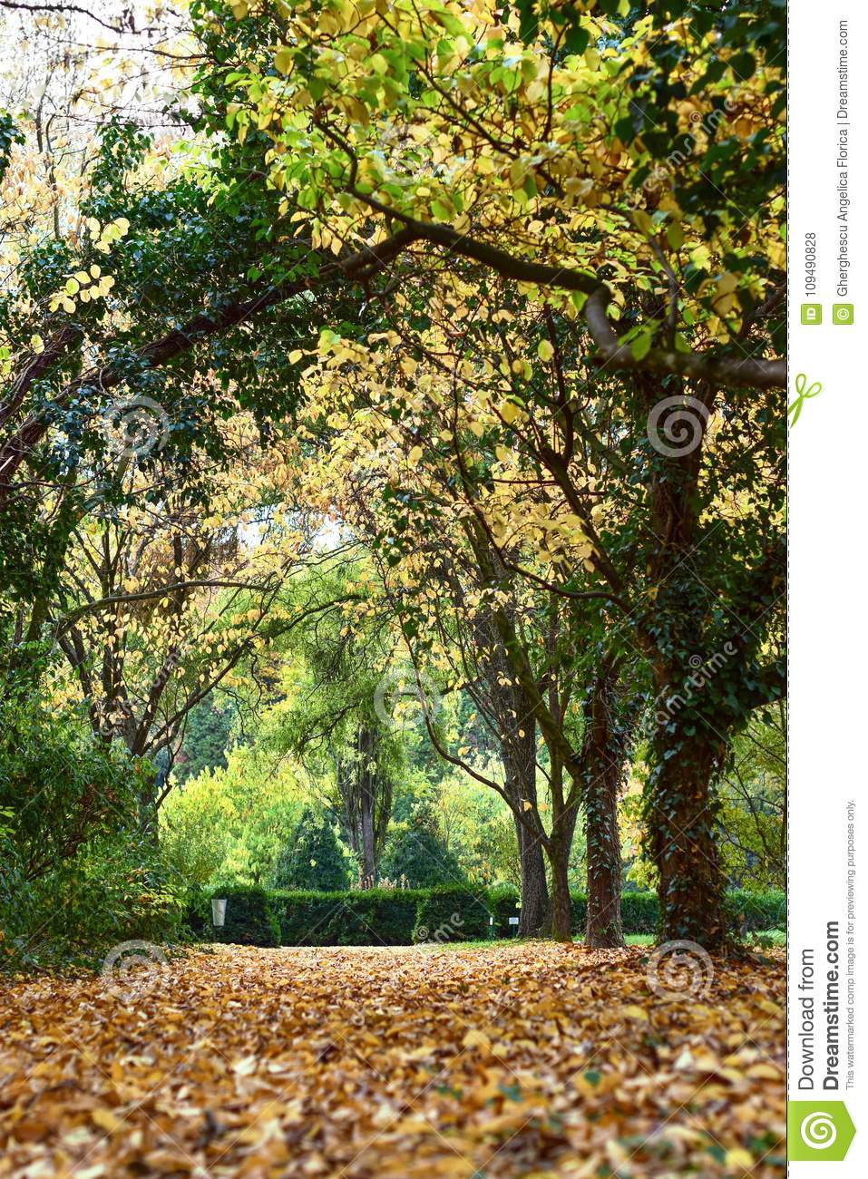 Autumn with colorful leaves at botanical garden