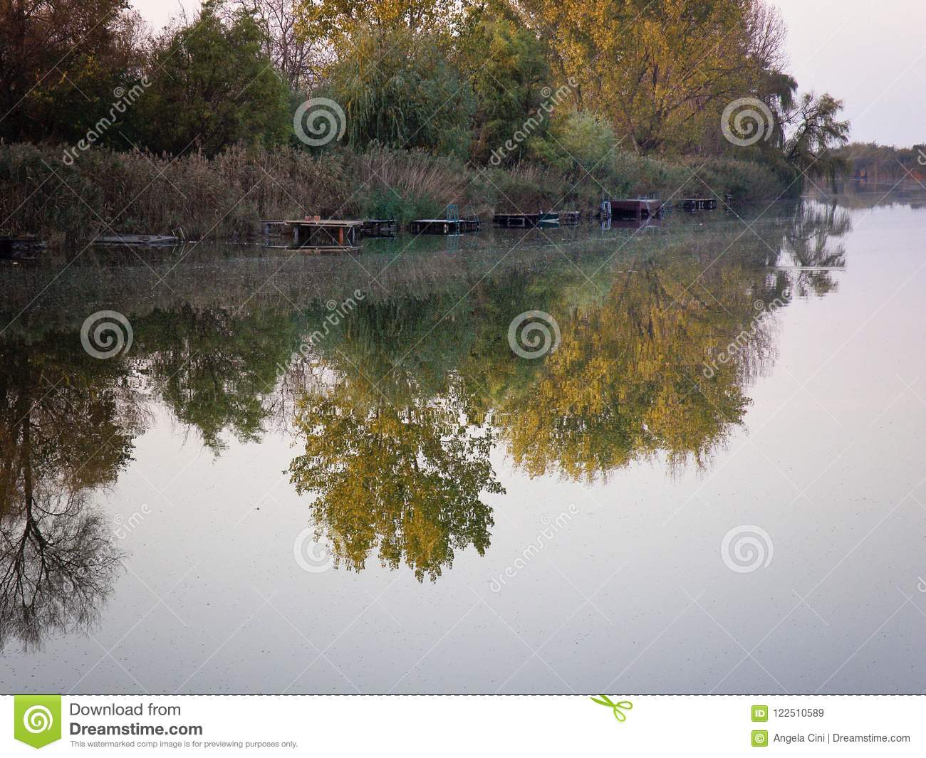 Autumn Colorful Trees Reflecting in River